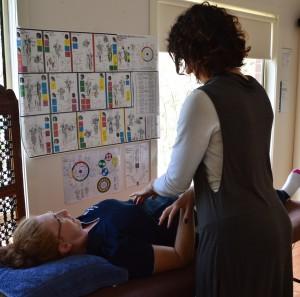 Muscle Testing, Biofeedback loop